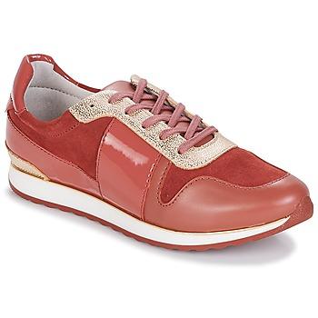 Încăltăminte Femei Pantofi sport Casual André SPRINT Roz