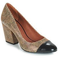 Pantofi Femei Pantofi cu toc André FAUVE Bej