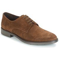 Încăltăminte Bărbați Pantofi Derby André LARDY Maro
