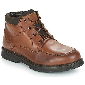 Pantofi Bărbați Ghete André AREZZO Maro