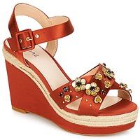 Pantofi Femei Sandale și Sandale cu talpă  joasă André IXIA Ocru