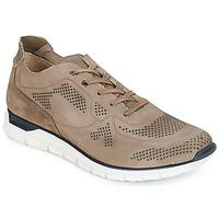 Pantofi Bărbați Pantofi sport Casual André GUIDO Taupe