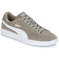 Încăltăminte Bărbați Pantofi sport Casual Puma SMASH V2 SD Gri