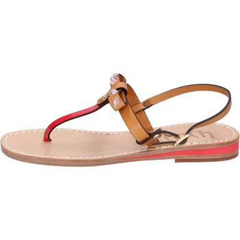 Pantofi Femei Sandale  Eddy Daniele Sandale AX766 Maro