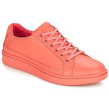 Încăltăminte Femei Pantofi sport Casual Timberland San Francisco Flavor Oxford  crabapple