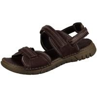 Pantofi Bărbați Sandale  Josef Seibel Jim Cafenii