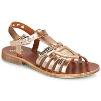 Pantofi Fete Sandale și Sandale cu talpă  joasă GBB FANNI Bronz