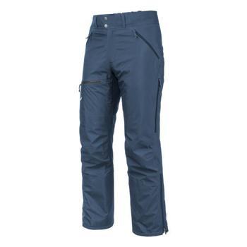 Îmbracaminte Bărbați Pantaloni  Salewa Sesvenna Ws Lrr M Pnt 25820-8671 blue